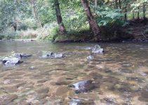 Horska Kamenice River Czechia