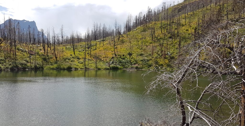 Lost Lake in Montana