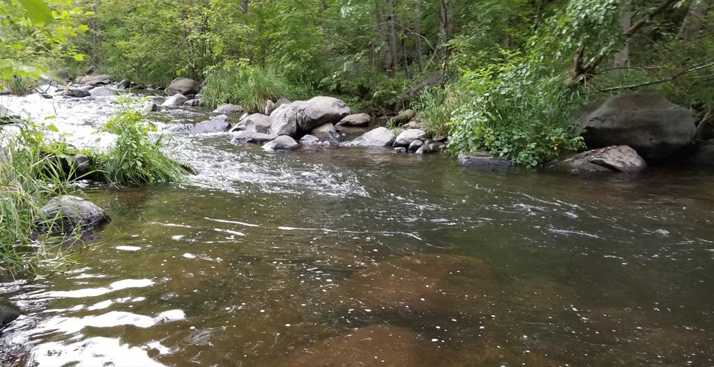 oak creek below below Bee Canyon