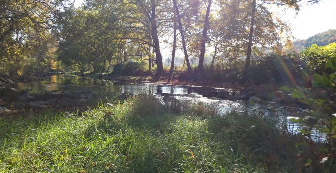 Loyalhanna Creek DHALO