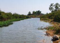 siem reap creek