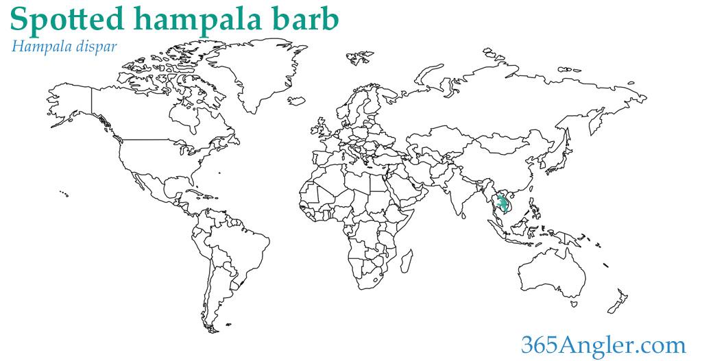 eye-spot barb distribution map